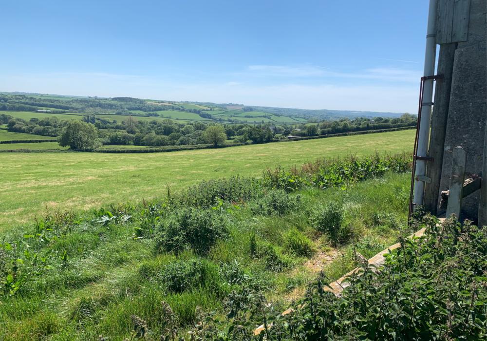 Cowsberry Farm – Ermington